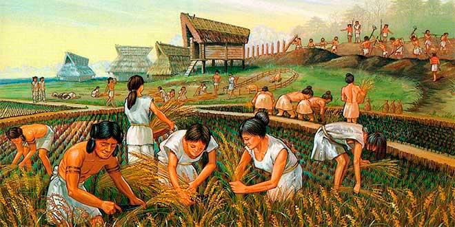 Agricultura durante el periodo neolítico